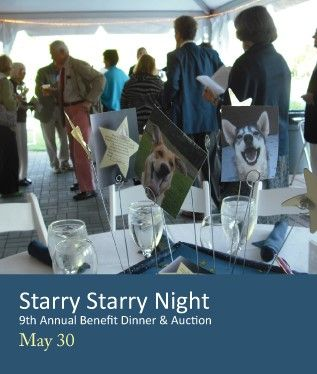 Make a Difference to the Life of an Animal and to Our Community at  Lucy Mackenzie Humane Society's Starry Starry Night on May 30th  West Windsor Vermont