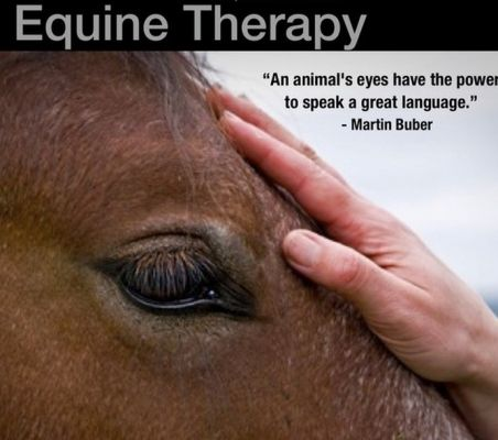 Equine Therapy Johnson Vermont