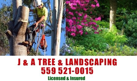 J & A Tree Landscaping Services Fresno California
