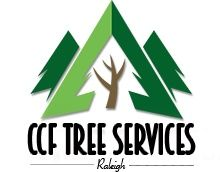 CCF Tree Services Raleigh North Carolina