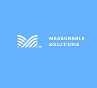 Measurable Solutions