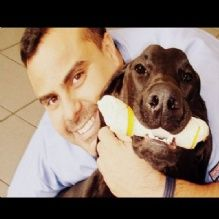 Wilton Manors Animal Hospital Wilton Manors Florida