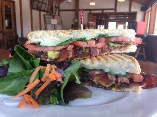 Special Of the Day at the Cold Hollow Cider Mills Apple Core Lunchette Waterbury Center Vermont