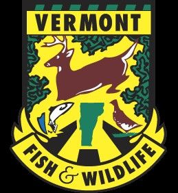 Vermont fish wildlife department news april 11 2016 for Vt fish and game license