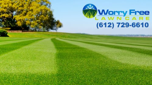 Worry Free Lawn Care & Snow Plowing minneapolis Minnesota