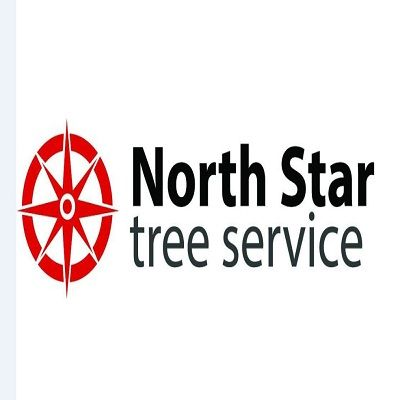 North Star Tree Service Lawrenceville Georgia