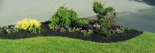 Natures Greens Landscaping East Moriches New York