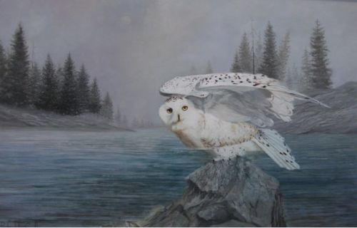 Richard Copello, Majesty - Ghost of the Artic (owl)