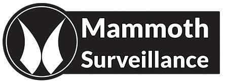 Mammoth Surveillance Camera Systems Norwalk Connecticut