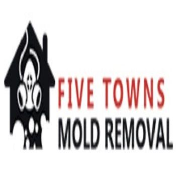 five towns mold removal Woodmere New York