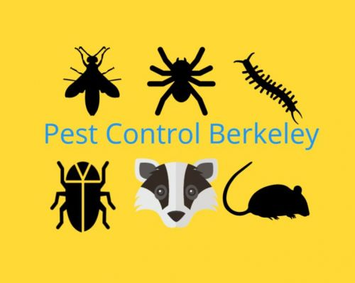 Pest Control Berkeley Berkeley California