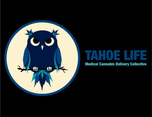 Tahoe Life Collective South Lake Tahoe California