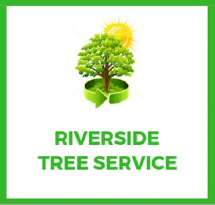 Riverside Tree Service Co Riverside Vermont