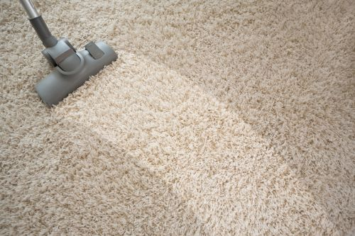 Beato Carpet Cleaning San Pedro California