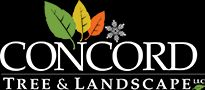 Concord Tree and Landscape Logo