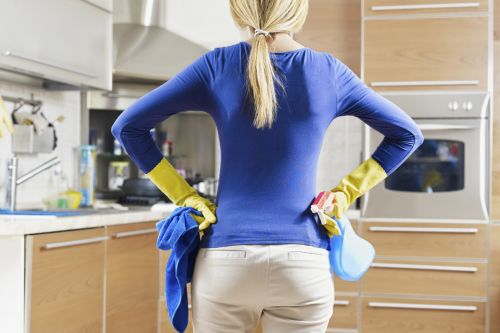 Dust N Shine Cleaning Service reno Nevada