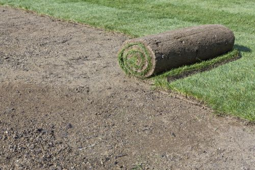 Greenline Sod Fort Myers North Fort Myers Florida