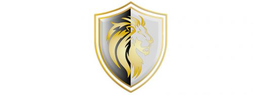 Lions Group Financial Corp. Houston Texas