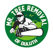 Mr. Tree Removal of Duluth Duluth Georgia
