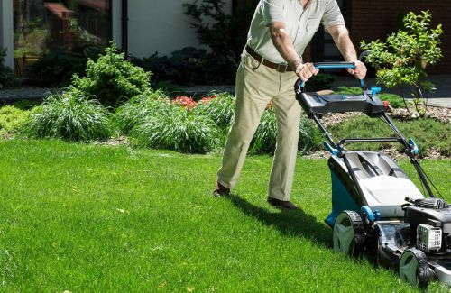 Early Bird Lawn Care and Maintenance West Columbia South Carolina