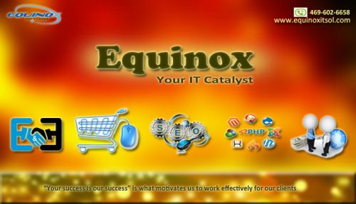 Equinox IT Solutions LLC | Software Development Services in Dallas | Services Dallas Texas