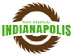 Tree Removal Indianapolis Indianapolis Indiana