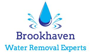 Brookhaven Water Removal Experts Atlanta Georgia