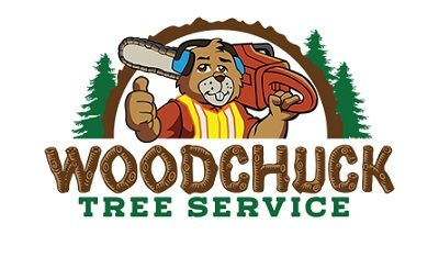 business removal tree service Los Angeles California