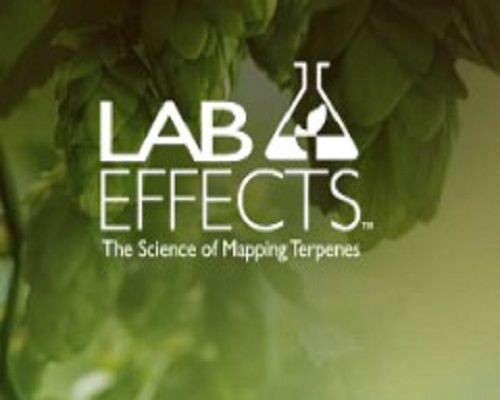 Lab Effects Golden Colorado