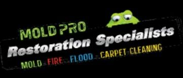 Mold Pro Water Removal Queens Flushing New York