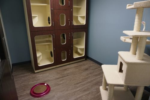 South Suburban Low Cost Veterinary Services Chicago Heights Illinois