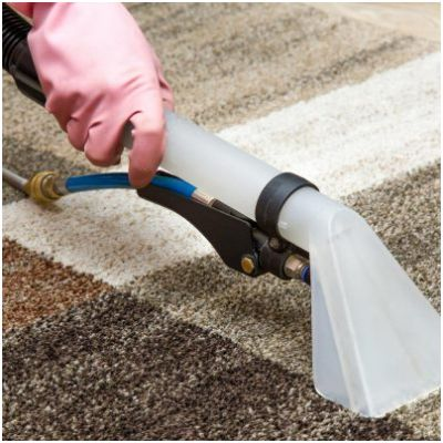 Everything Under The Son Carpet Cleaning Orlando Florida