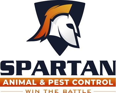Spartan Animal and Pest Control New Bedford Massachusetts