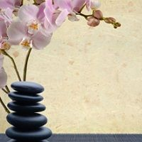 Strongsville Massage Therapy Strongsville Ohio