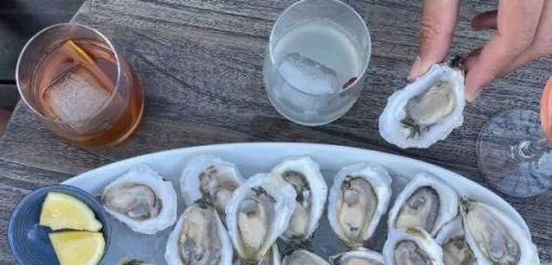 Aphrodite Oysters Georgetown Maine