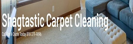 Shagtastic Carpet Cleaning Burton Michigan