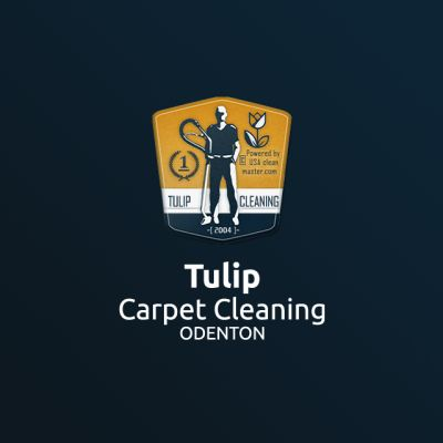 Tulip Carpet Cleaning Odenton | Carpet Cleaning Odenton Odenton Maryland