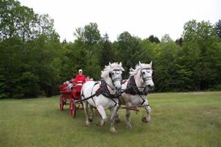 Gentle Giants Sleigh-Carriage Stowe Vermont